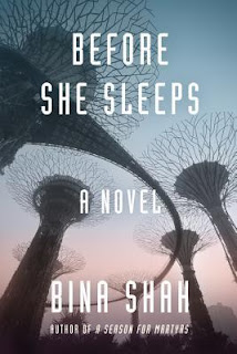 Before She Sleeps by Bina Shah, InToriLex