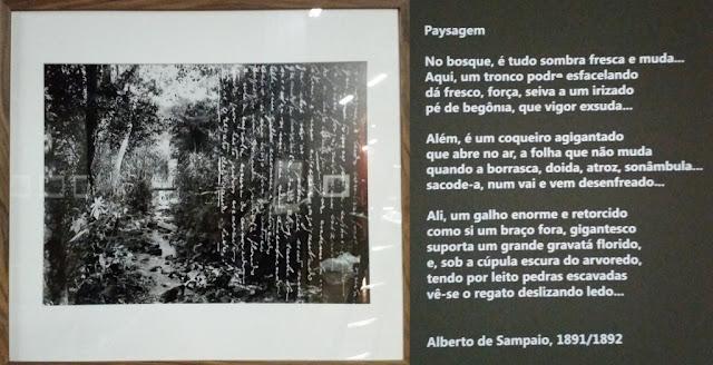 Uma foto de paisagem com poema - Exposição Lentes da Memória