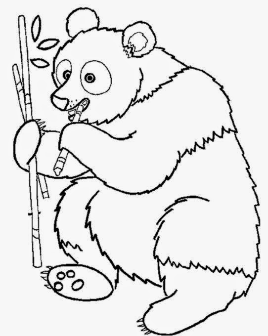 panda bear coloring pages free coloring pages