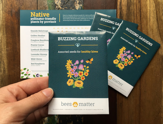 Bees Matter - Buzzing Garden Seed Kit