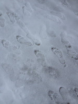 bare foot prints in the snow - cold feet