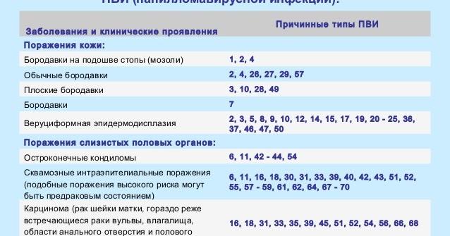 Выявлено впч 44 - Jks-k.ru