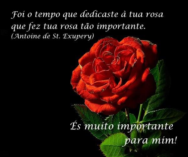 Imagens Linda Com Frases: Lindas Mensagens De Amor Com Imagem