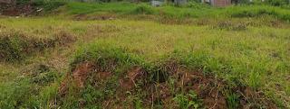 Tanah dijual di Semarang