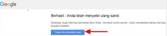 Reset Password Email Gmail Akun Google Berhasil