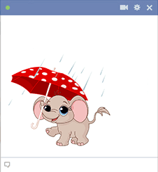 Elephant with umbrella