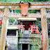日本「神社」、「神宮」與「寺廟」傻傻分不清? 正確參拜方式告訴你