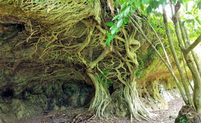Rumah Batu Serombou - Wisata Rokan Hulu