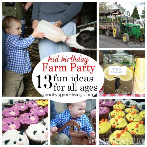 Farm Birthday Party Last Week My Little Buddy Turned 2 Years Old