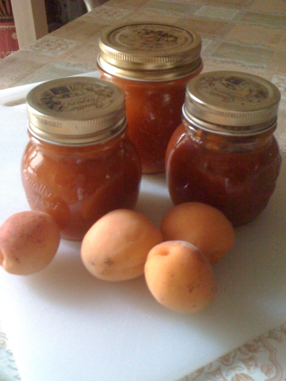 Far Bollire Vasetti Marmellata marmellata di albicocche e i miracoli… | il peperoncino verde