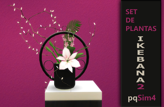 Planta Ikebana 1
