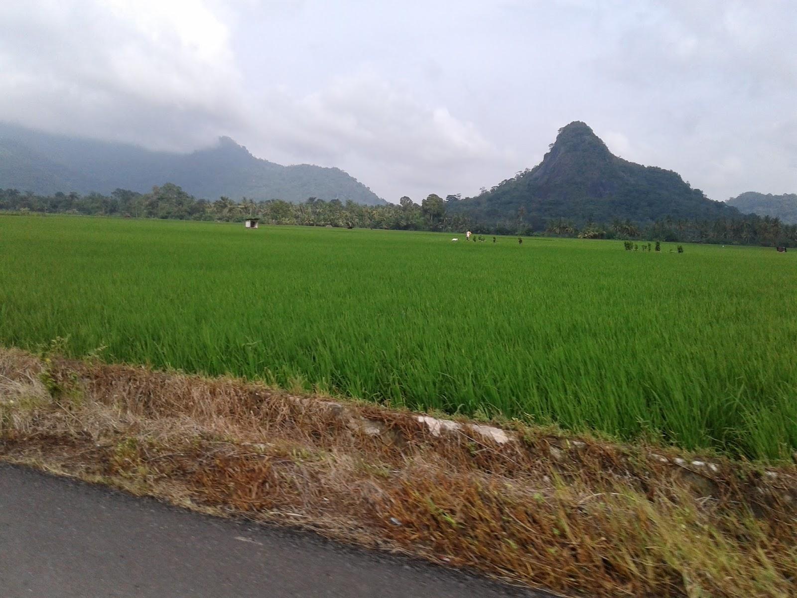 Tempat wisata di Musi rawas