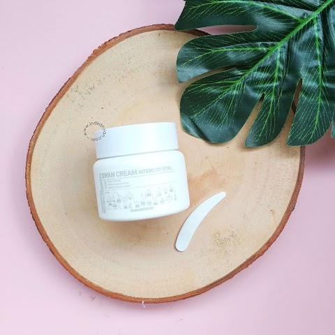 [REVIEW] Swanicoco - Swan Cream Intensive Vital*