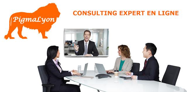 consulting expert en ligne