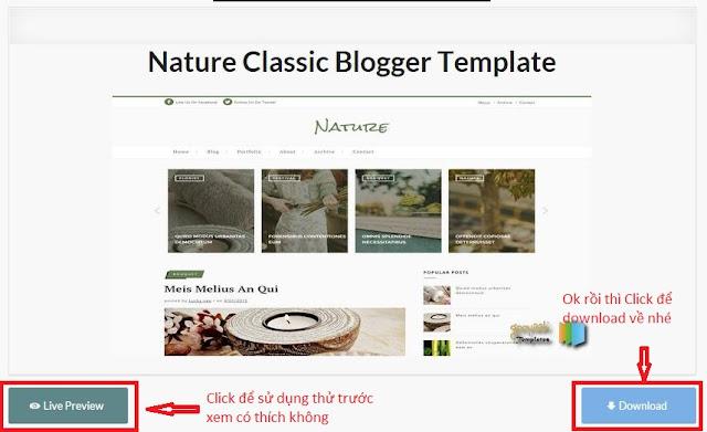 template chuan seo cho blogspot