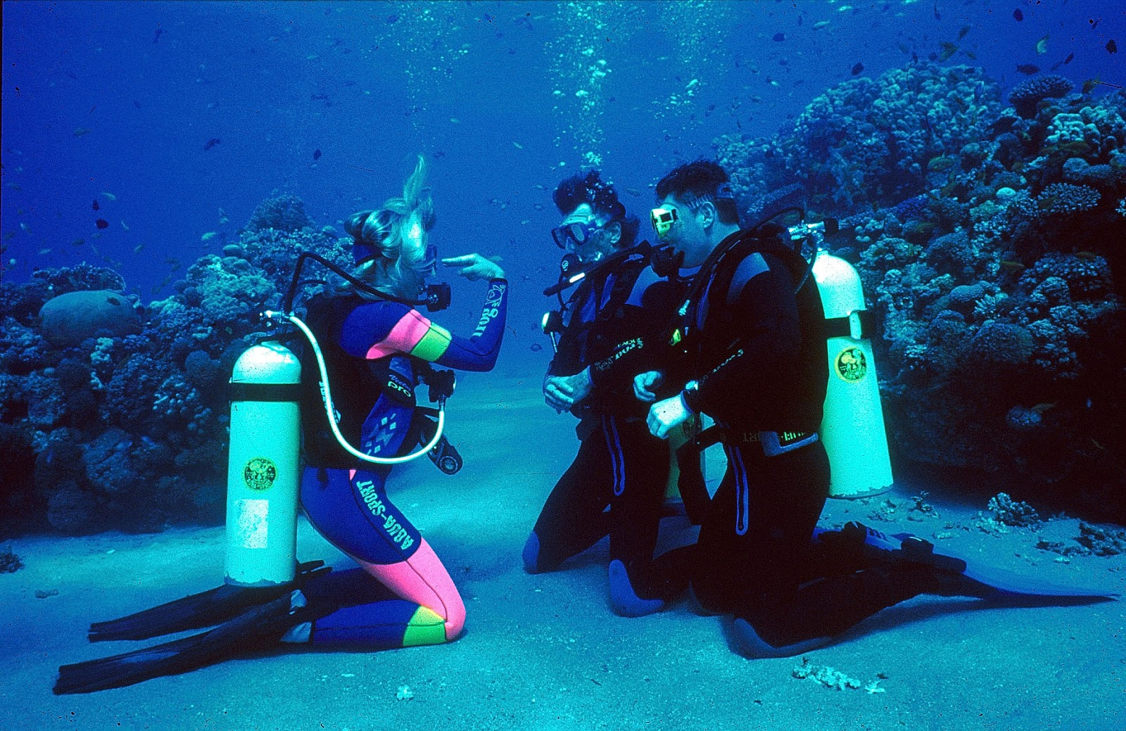 an illustration of the basic aspects of scuba diving Buy scuba gear & dive gear at the best prices & largest selection with scuba gear reviews learn what dive gear is best for you to enjoy while scuba diving basic.