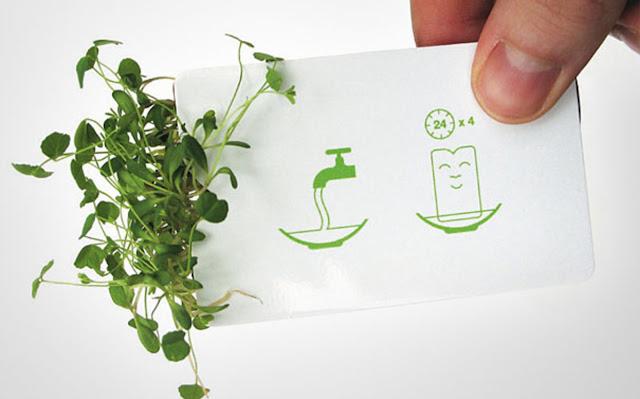 Túi đựng hạt giống là ý tưởng thiết kế danh thiếp cho công ty thiết kế Anther Bloomin' Designer