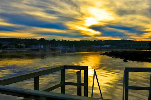 Reena Walkling: Golden Moments in Maine