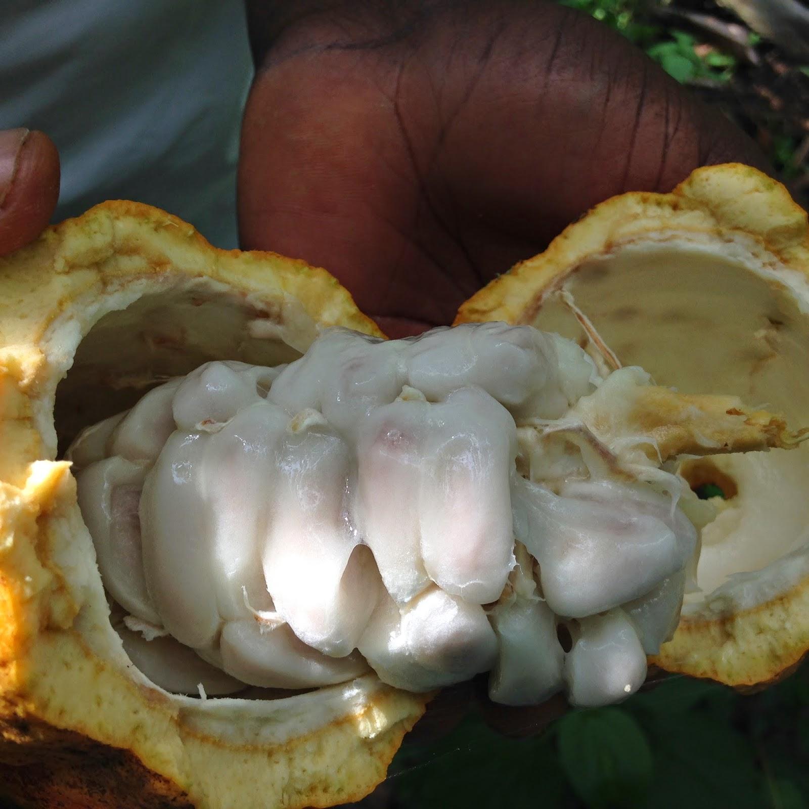 GROWING GHANA: June 2014