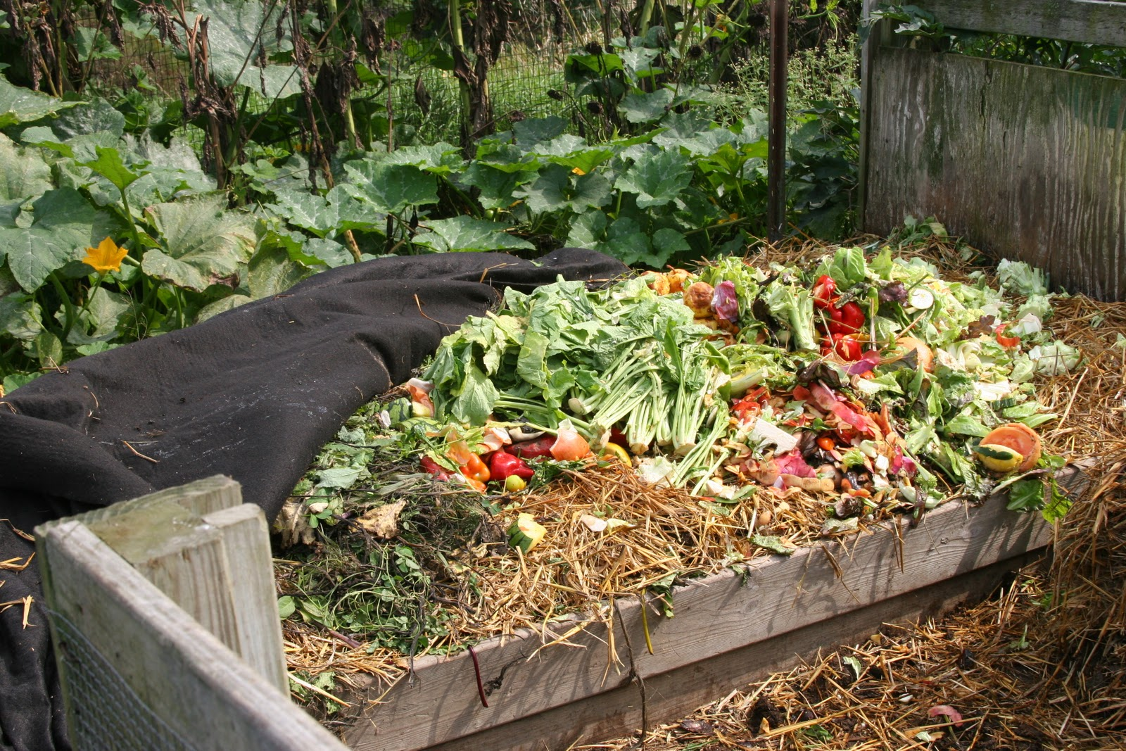 Karmê Chöling: Rebirth In The Garden: Composting At Karmê