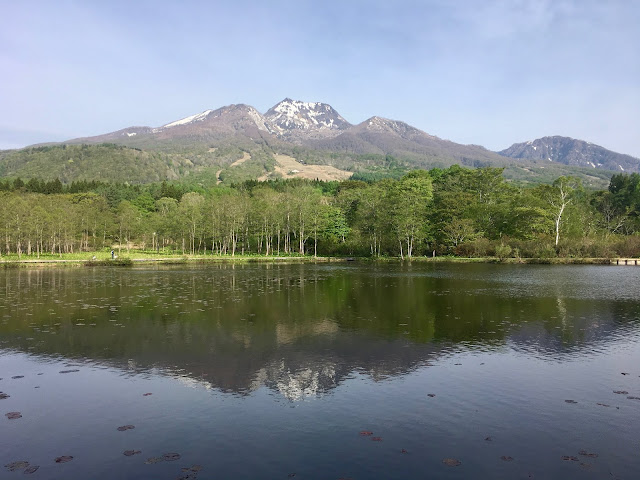 春の妙高山の写真