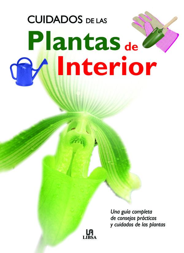 Cuidados de las plantas de interior plantukis - Cuidado de plantas de interior ...