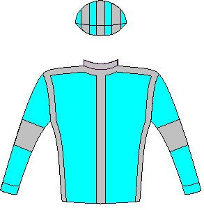 Undercover Agent - silks - Aquamarine, dark grey seams, aquamarine sleeves, dark grey armbands, striped cap
