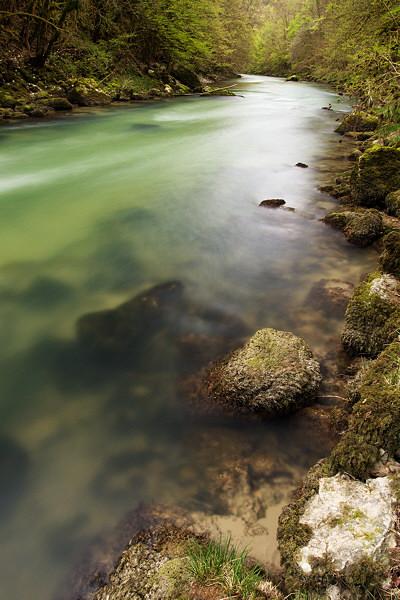 Springtime along the river