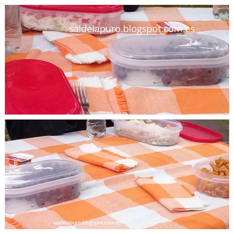 ideas-trucos-picnic
