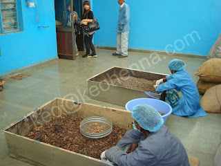 Herbal Hair Dye Manufacturers
