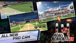 Real Cricket 18 1.1 Mod