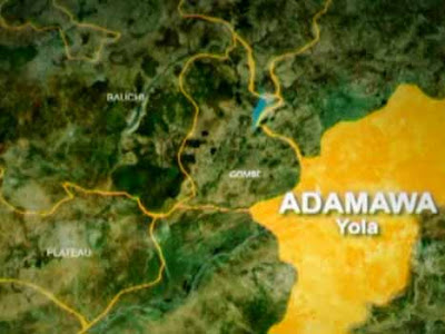 We're making progress in fight against kidnappers – Adamawa CP