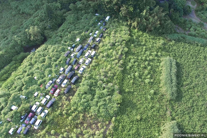 Abandoned vehicles are slowly swallowed up by nature on a stretch of road near the power plant - Never-Before-Seen Images Reveal How The Fukushima Exclusion Zone Was Swallowed By Nature