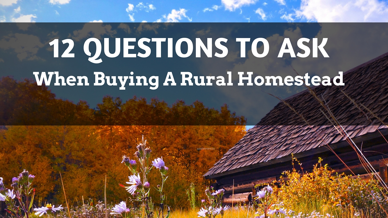 12 Questions to ask when buying a rural homestead