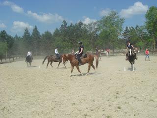 Riitta Reissaa, Horsexplore, Unkari, lännenratsastus, El Bronco