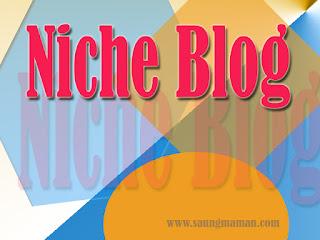 Cara Memilih Niche Blog Yang Banyak Dicari