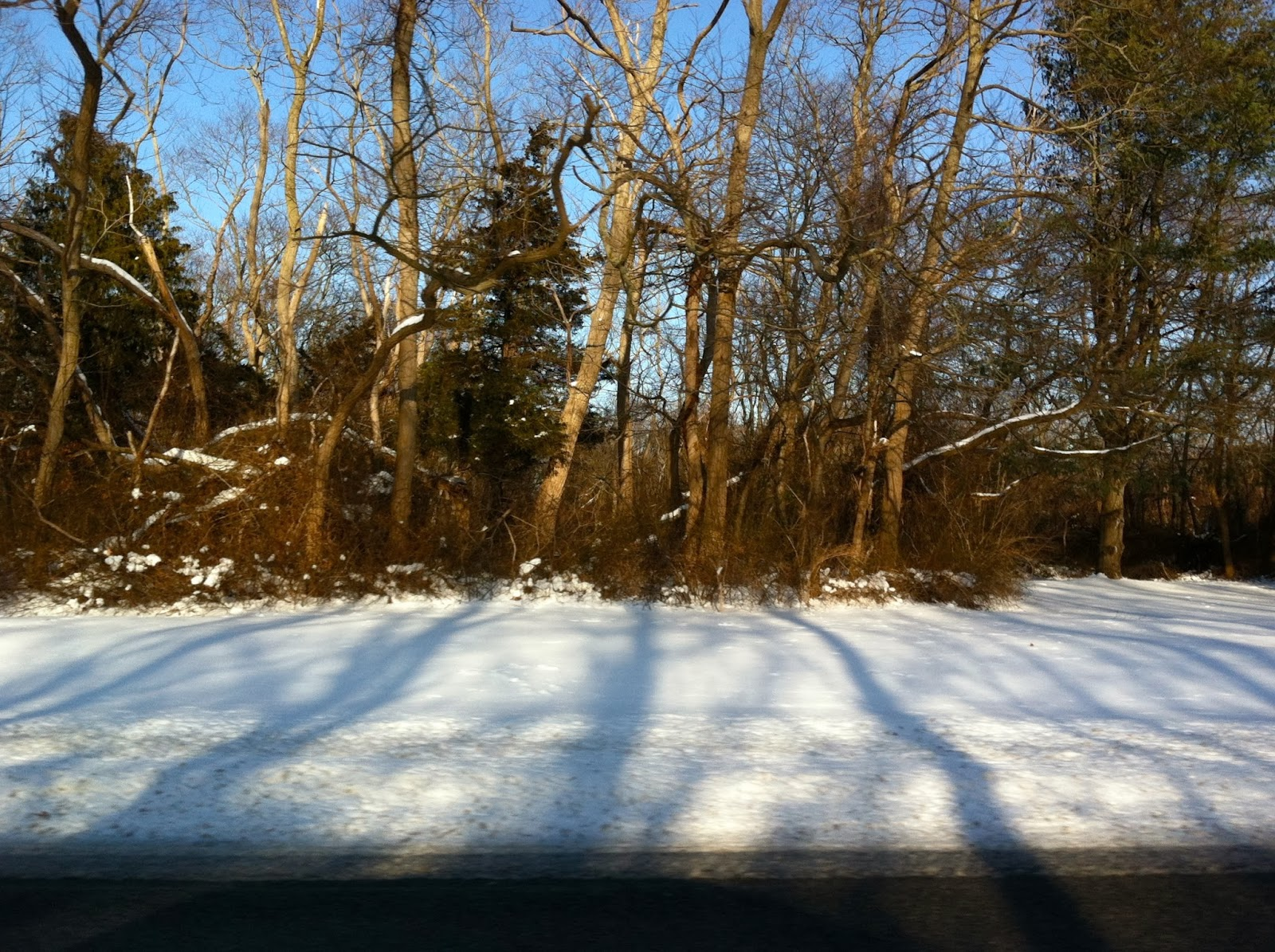 Snow-at-Bethpage-Park