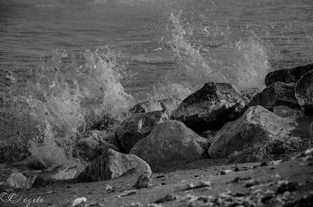 Морско-вълнение-Sea-excitement