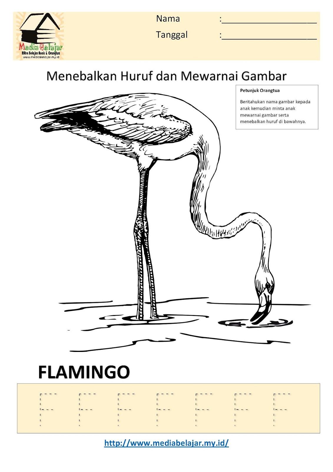 Lembar Kerja Paud Menebalkan Huruf F dan Mewarnai Gambar Flamingo