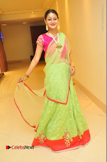 Model Nilofer Haidry Stills in Green Saree at Trendz Exhibition and Sale 2016  0051.JPG