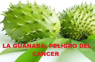 la guanabana peligro del cancer