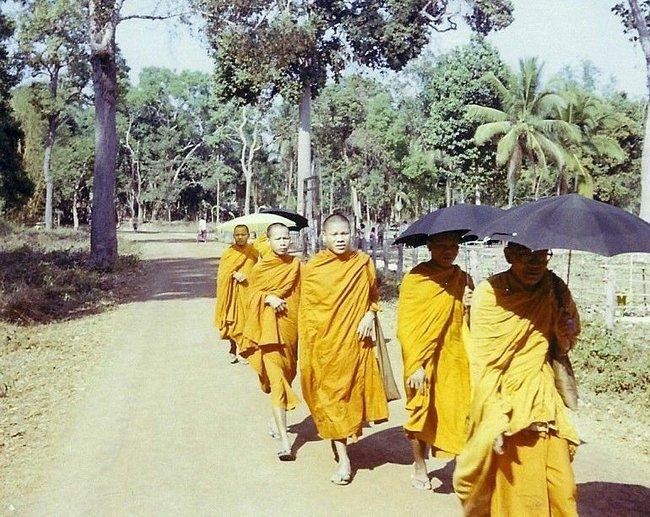 Тайские монахи под зонтиками