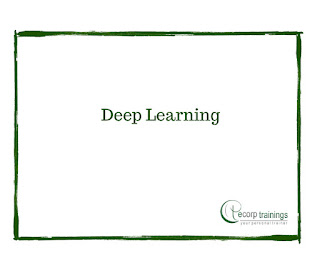 Deep Learning training