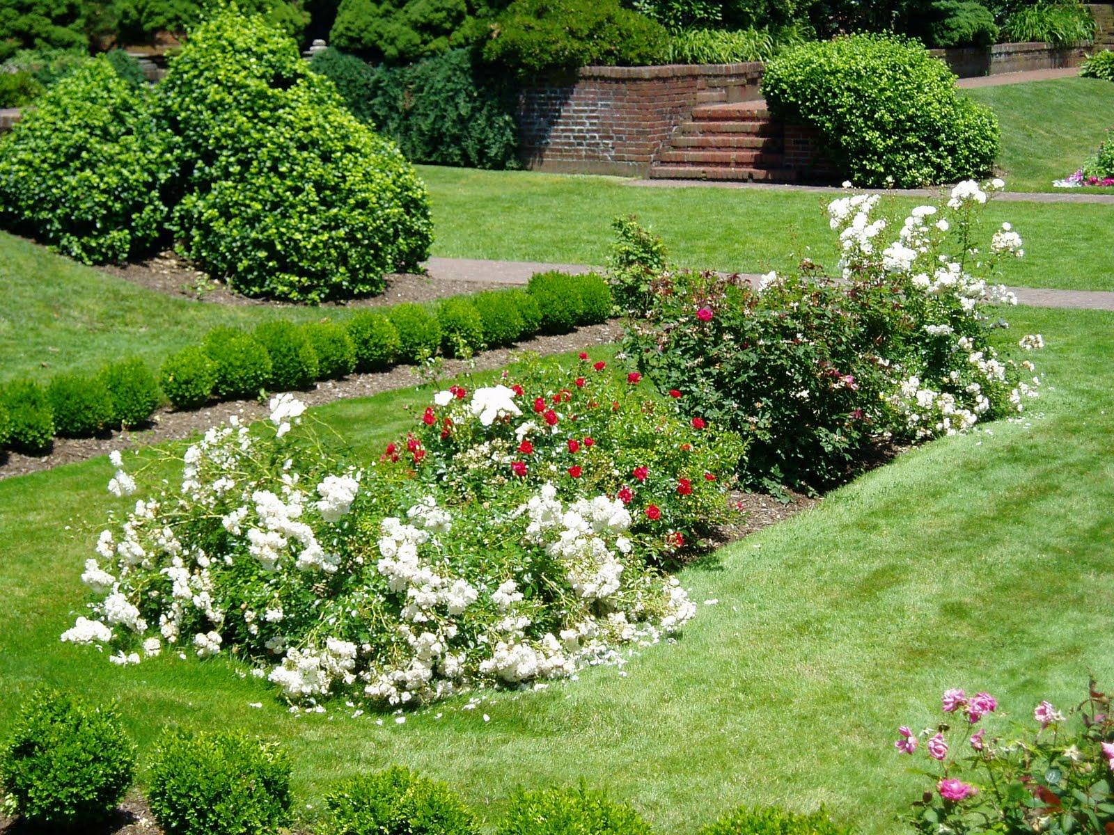 Enchanted Garden: Evelyn And Rose: Enchanted Garden