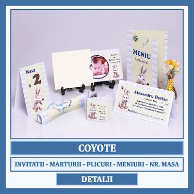 http://www.bebestudio11.com/2016/12/modele-asortate-botez-coyote.html
