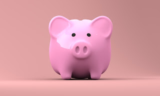 pink piggy bank front facing camera