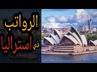 رواتب العمل في استراليا