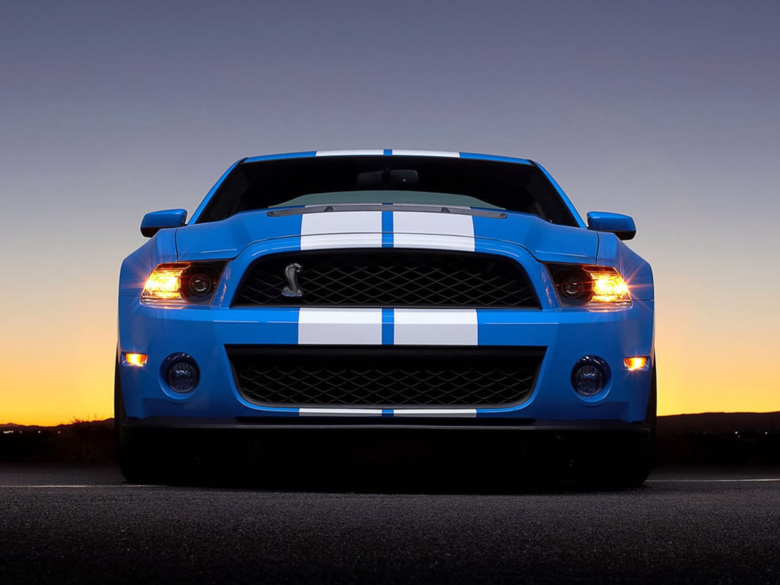 Cute Baby Hd Wallpaper Ford Mustang Shelby Gt500 Car Wallpapers