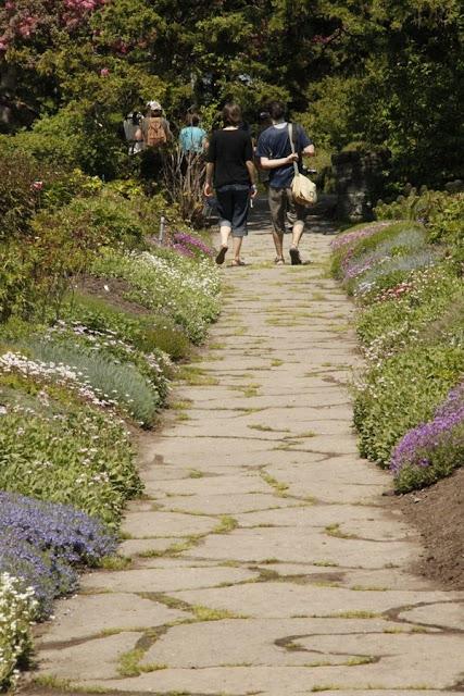 Garden Paths A Cool Features