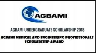 Agbami Undergraduate Scholarship